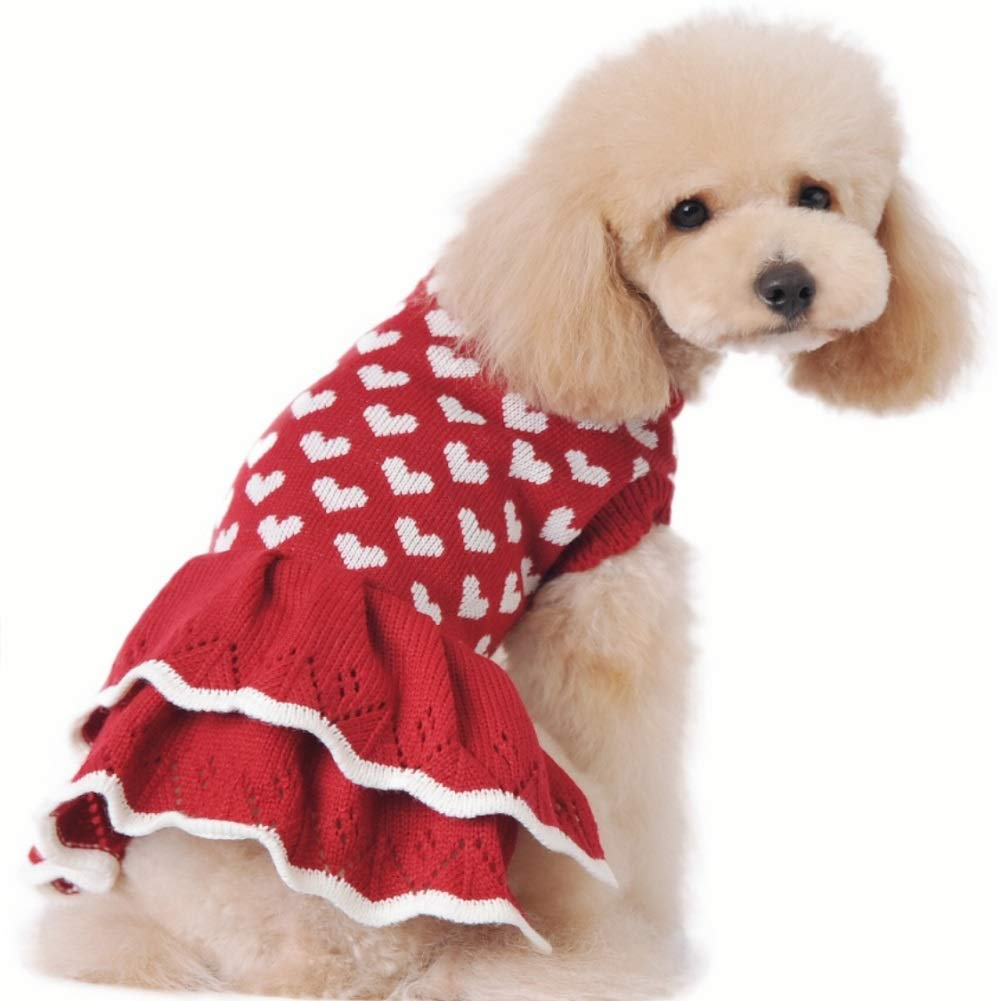 cute dog wearing red dress with white hearts