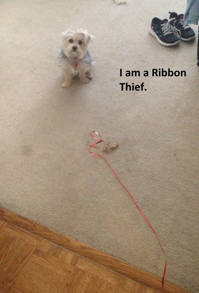 ribbon-thief