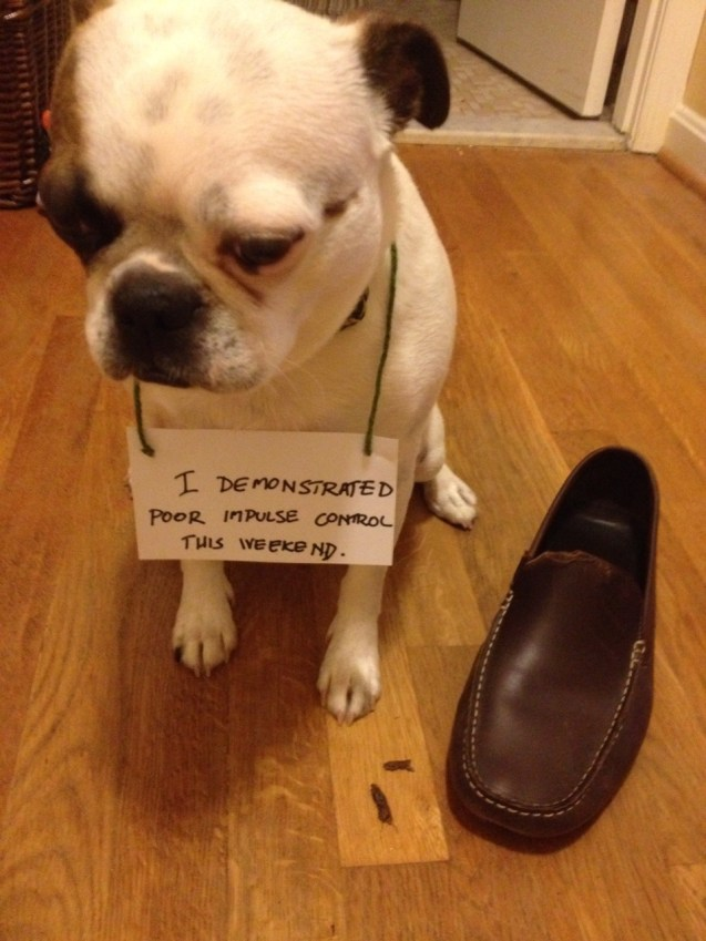 Bob-shaming