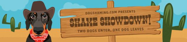 shameshowdown