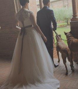 servizio dog sitting matrimoni