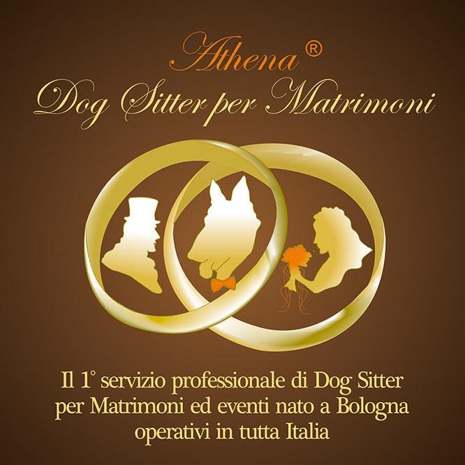 Athena dogsitter per matrimoni