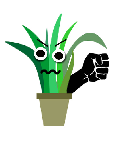 angry plant