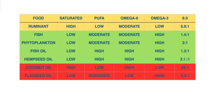 omega-3-oils-for-dogs