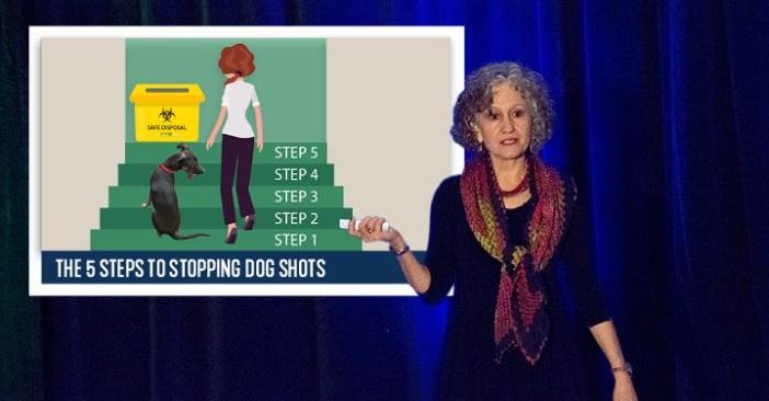 dog shots