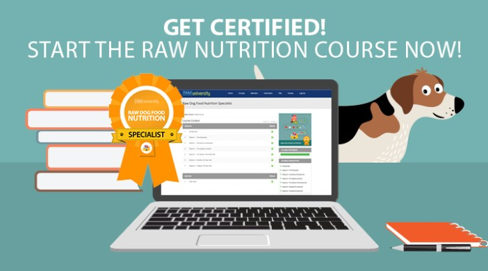 Raw Nutrition Course