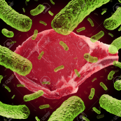 meat and bacteria