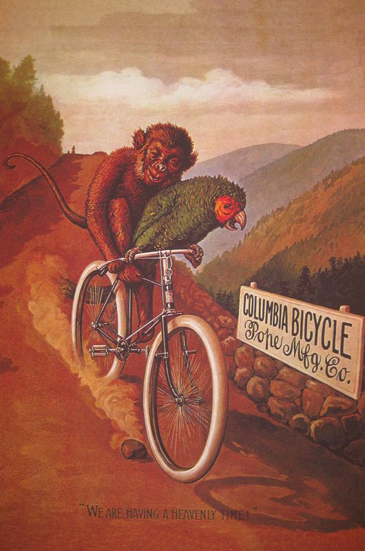 Columbia Bicycle Advertising Poster DogsPlayingPoker Org
