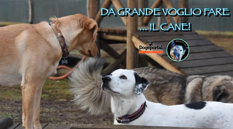 Arratza de cani! 〰️ Da grande voglio fare … il cane!