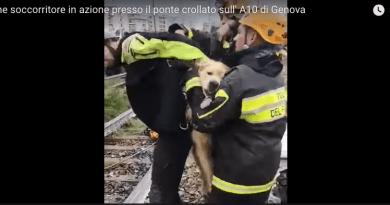 Genova – Vigili del Fuoco in azione con il cane.