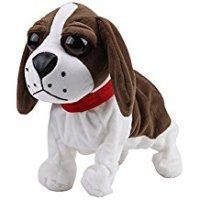Il cane Peluche. La razza ideale per i bambini e ottima per Natale. Ecco le sue caratteristiche...