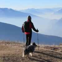 In Montagna con il Cane - L'intervista a Davide Berti