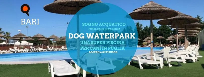 Dog waterpark su dogsportal.it