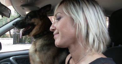 VIDEO: Se non ti porto non parto. La campagna della Polizia di Stato