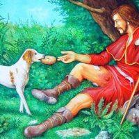 San Rocco  il protettore dei cani: 16 agosto