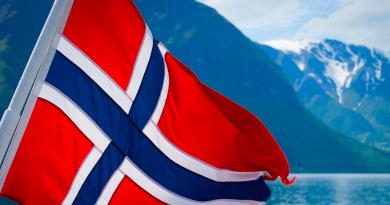 Norvegia: cani malati, non c'è pericolo di epidemia