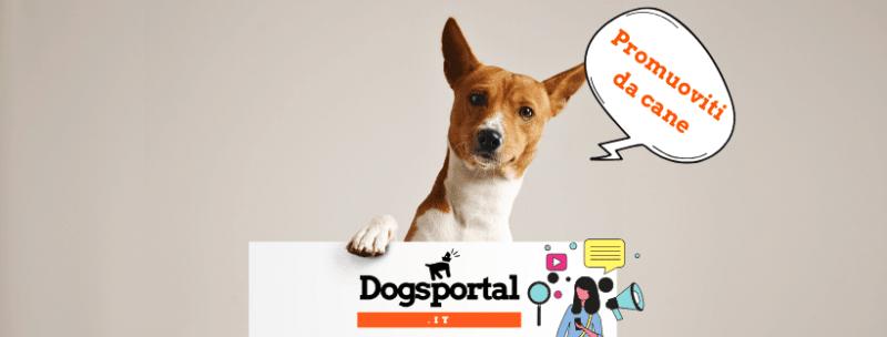 Promuoviti su Dogsportal.it: marketing per il settore cinofilo