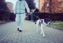 Operatori cinofili UISP al servizio dei cani di famiglie in quarantena