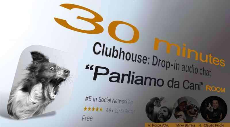 Parlare da cani su Clubhouse: la room con Claudio Piccoli, Mirko Barrera e Rocco Voto dedicata al cane e agli educatori cinofili