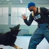 Dog Trainer – scuola per cani su Netflix: LA RECENSIONE