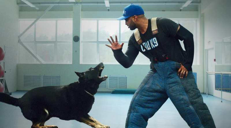 Dog Trainer Netflix