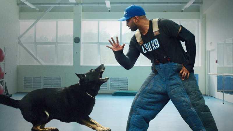 Dog Trainer – scuola per cani su Netflix