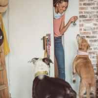 Piemonte: nasce l'elenco regionale dei Dog sitter