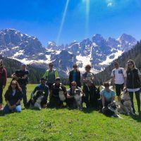 TripForDog.com:  turismo a quattro zampe pensato davvero per tutti