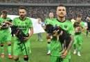La Lega calcio rumena dedica ogni partita ai cani da adottare