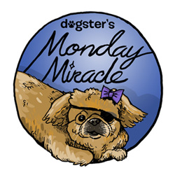 Dogster-Monday-Miracle-badge_49_0_0_01