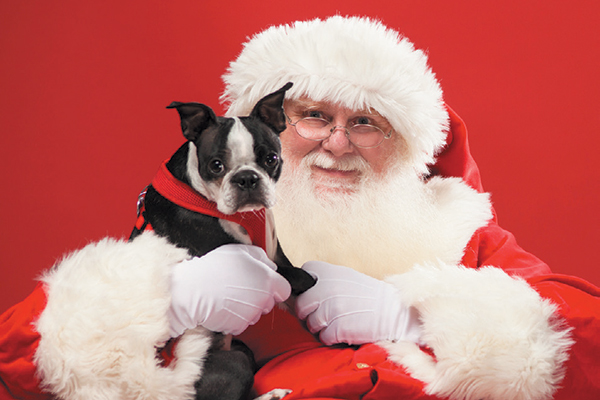 Santa with a dog during the holidays.