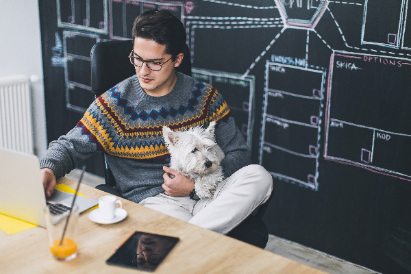 Man at office with dog.