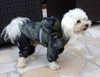 Dog Winter suit and Jacket SNOW CRAWLER Coat for dogs