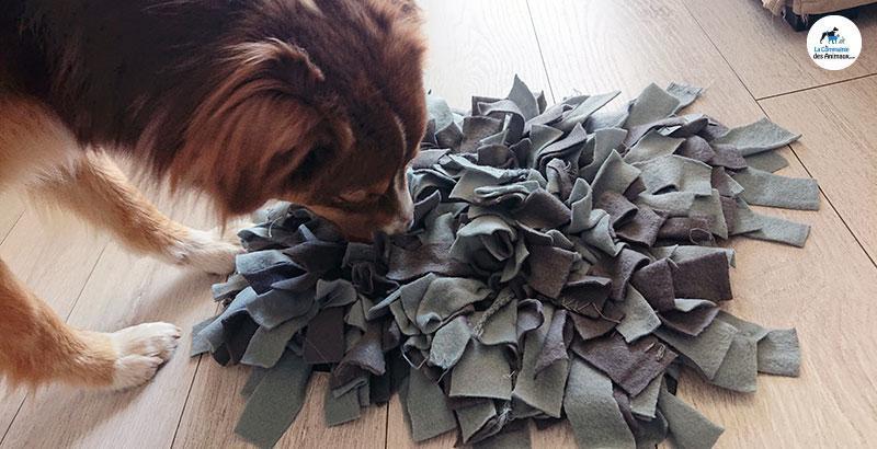 comment fabriquer un tapis de fouille