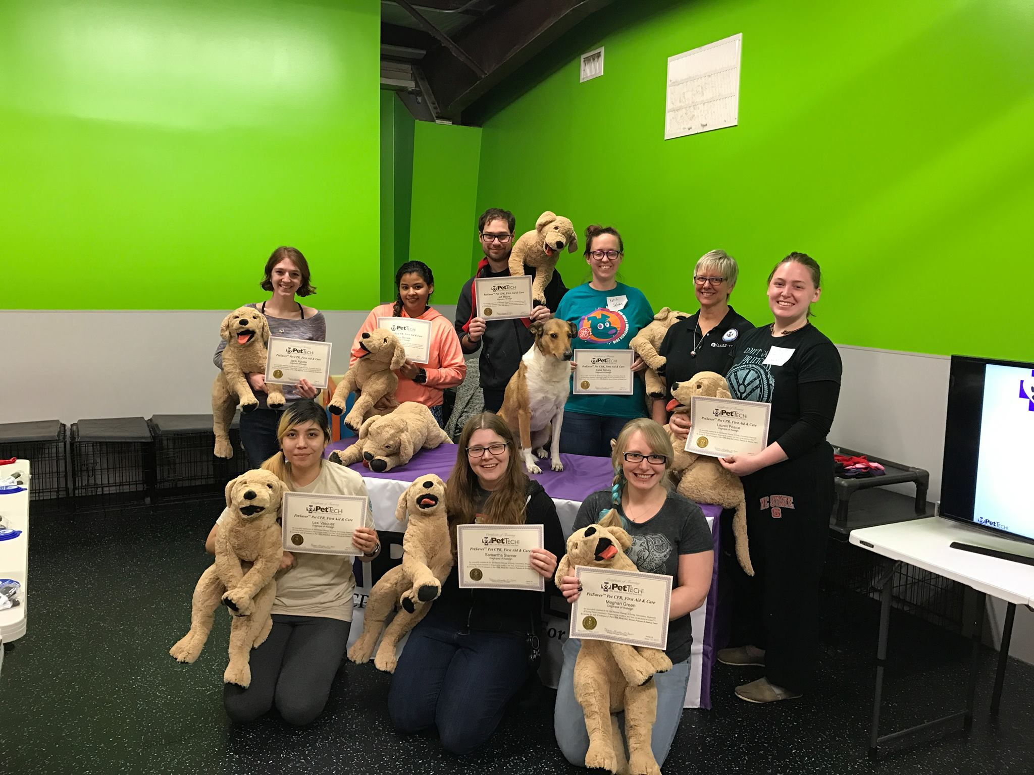 Pettech Pet Cpr First Aid And Care Class North Raleigh