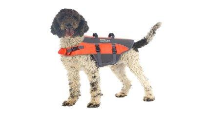 best large dog life jacket