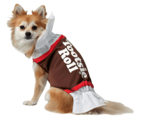 Great Funny Halloween Costumes For Large Dogs