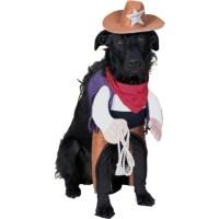 5 Handsome Halloween Dog Costumes