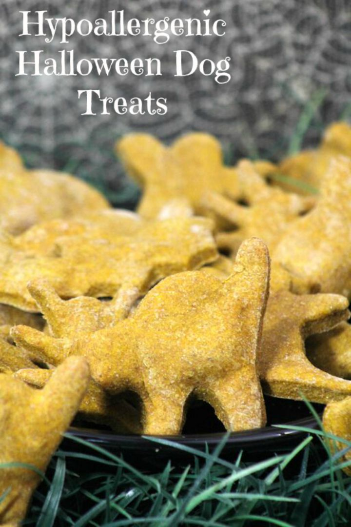 treat recipes here s another easy hypoallergenic halloween dog