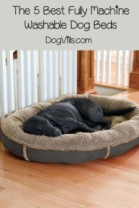 The 5 Best Fully Machine Washable Dog Beds - DogVills