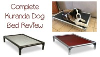 Kuranda Dog Bed Review: Which Style is Right for Your Dog ...