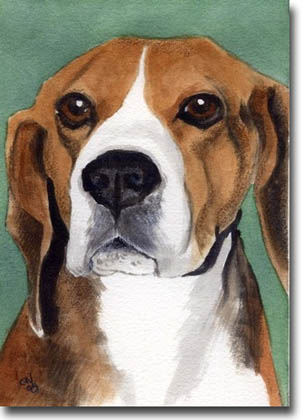 The Beagle Shop Beagle Art Prints Posters Paintings