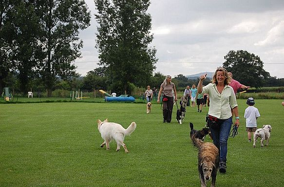 Tina Hazzard at Dogwise Training School in Mere, Wiltshire