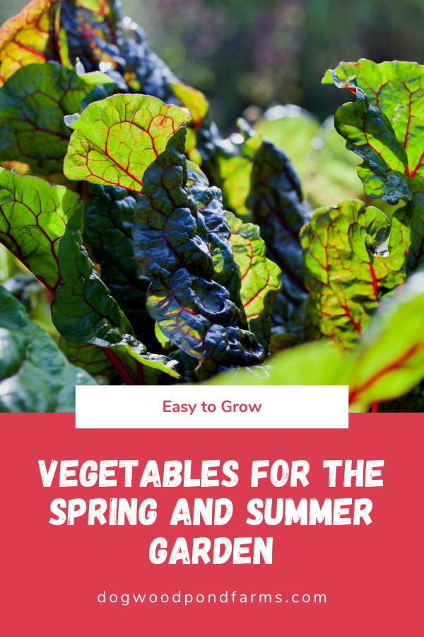 Vegetables for the Spring and Summer Garden