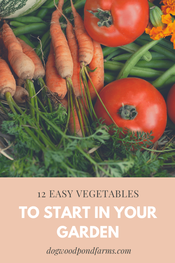 Start these vegetables from seed