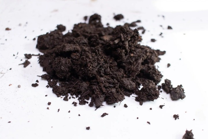 Compost for soil blocks
