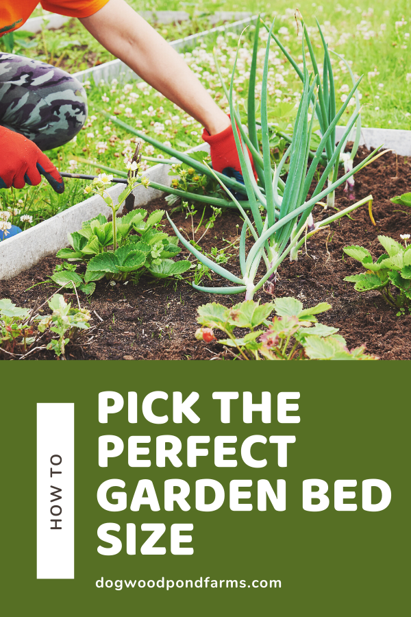 picking the best garden bed size