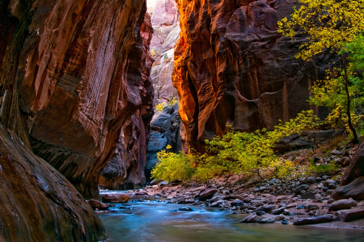 8 Things You Didnt Know about Zion National Park  US Department of the Interior