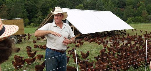 Joel Salatin gives a tour of Polyface Farm. Here he stands inside electric netting surrounding a flock of laying hens and their portable coop, dubbed an Eggmobile.
