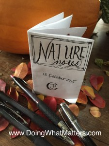 Regular old paper and plain old pens make a fine mini nature journal.